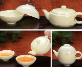 Shell Cowry Porcelain Kungfu Tea Cup Set for Wholesaler