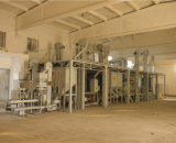 Wheat, Maize, Corn Seed Cleaning Processing Plant