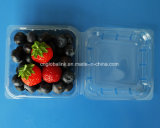 Blueberry Packing Container for 125 Gram Plastic Fruit Packaging Box