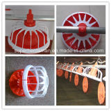 Full Set High Quality Poultry Farming Equipment