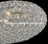 Newest Beatiful Handcraft Pendant Light/Crystal Chandelier