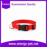Adjustable Easy Pet Wear Dog Collar with Customized Logo