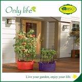 Onlylife High Quality Grow Bag Garden Plant Bag