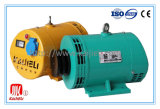 Stw Series Brushless Synchronous Generator