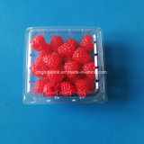 170g Clear Plastic Raspberry Clamshells Pet Fruit Packaging
