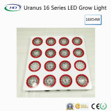 High-Lumens Uranus 16 Series LED Grow Light for Commercial Cultivation