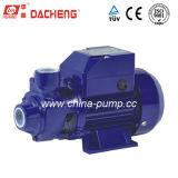 Qb Series (QB-60) Water Pump