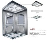 Syney Passenger Elevator for Home (LL-014)
