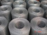 Welded Wire Mesh (001)