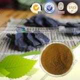 Lentinus Edodes Extract (10%-40% Polysaccharides)