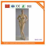 High Quality Fiberglass Mannequins Torso 9236