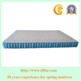 Top Quality Mattress Spring High Count 3 Zones Pocket Spring for Mattress