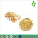 Organic Green Oats Extract 10: 1~20: 1 20%~70% Beta Glucans