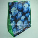 PP Non Woven Shopping Bag (BG1114)