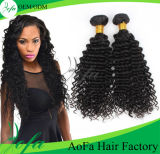 All Texture 7A Grade Virgin Brazilian Human Remy Hair