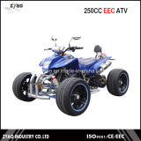 250cc EEC Racing ATV with 14 Inch Alloy Wheel Alloy Arm Legal on Road