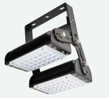 Ce RoHS 100W Osram Chips Segment LED Flood Light