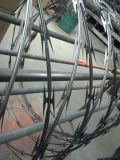 Stainless Steel 316 Razor Wire Anping Factory
