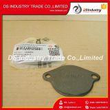 Cummins Diesel Engine Part Flywheel Cover Plate 3908095