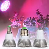 Indoor Grow Plant Lamp with Ce & RoHS