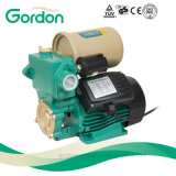 Copper Wire Electronic Pressure Switch Water Pump with Check Valve