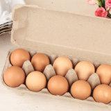 Poultry Best Price Chicken Egg Incubator Egg Tray Incubator