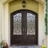 Made in China Eyebrow Top Wrought Iron Double Door (UID-D058)