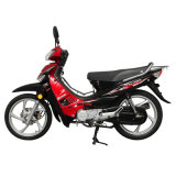 Jincheng Motorcycle Model Jc110-19s Cub