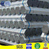 48mm Electrical Galvanized Steel Pipe for Scaffolding (HDP017)
