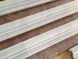 Carrara White Chair Rail Molding