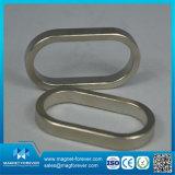 Industrial Neodymium Magnetic Ring Magnet Speaker Magnet