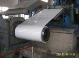 Color Coated Alumzinc Steel Coil