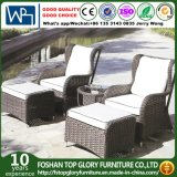 Outdoor Furniture Garden Sofa (TG-1510)