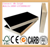 (Wholesale plywood) 1220X2440mm Film Faced Plywood/Shuttering Plywood for Construction
