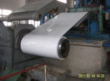 Prepainted Steel Coil (color coated galvanized steel sheet)