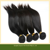 Silk Straight Virgin Chinese Human Hair Extension Real Human Hair (ZYWEFT-173)