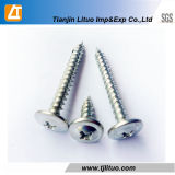Electro Galvanized Wafer Truss Head Self Tapping Screw