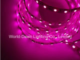Pink Color LED Sstrip Light with Ce & RoHS Certification