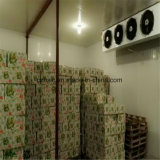 Cold Room, Cold Storage, Deep Freezer, Refrigerationparts for Food