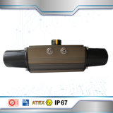 Made in China Factory Pneumatic Actuator