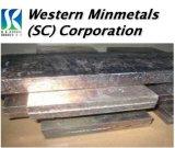 Bismuth Ingot at Western Minmetals