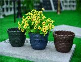 Variety of Garden Plastic Flowerpot