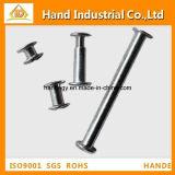 Stainless Steel Fastener Binding Screw