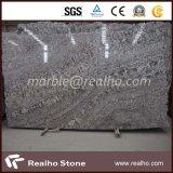 Silver Color Granite Slab Bianco Antico Granite Slab for Countertop