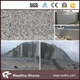 Own Quarry G603 Grey Granite with SGS Certificated (RHCA-011)