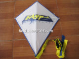 Promotional Lovely Diamond Material Polyester Kite From Manufactory