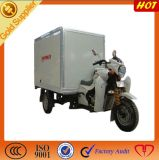 Cargo/Fish Tricycle