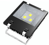 150W Mean Well Driver LED-Flood Light