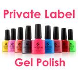 Nails Factory Soak off UV/LED Nail Gel Polish Cheap Gel Polish