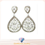 Fashion 925 Sliver Earring with Shine Stones Jewelry (Se3214W)